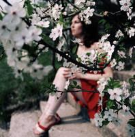 the beauty is short-lived by AushrineMarija