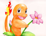 Charmander in the Tall Grass
