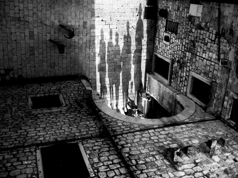 In the shadows by accessQ