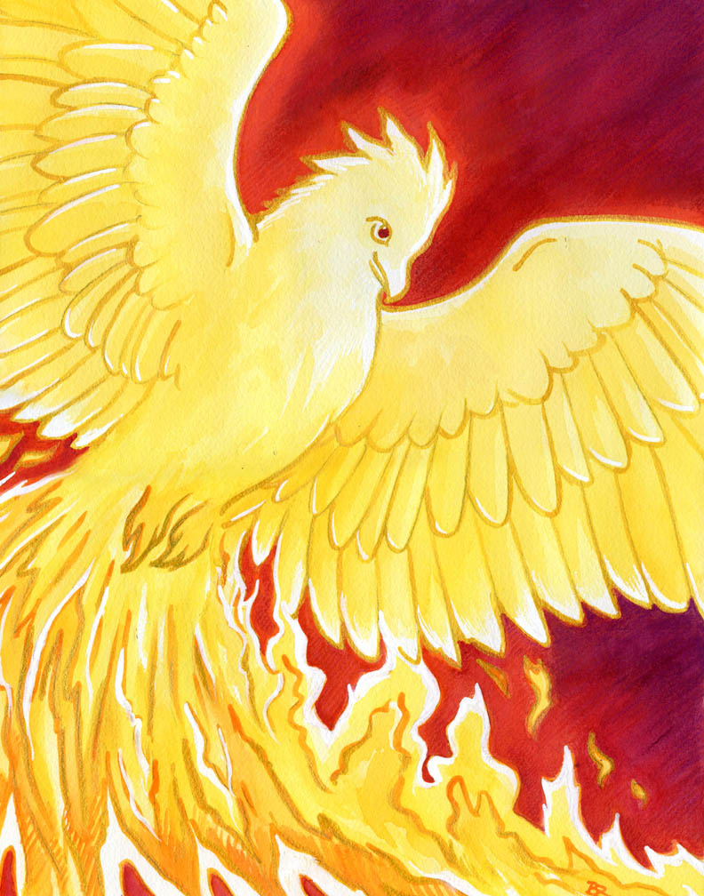 Red Bird of the South by LadyViridis