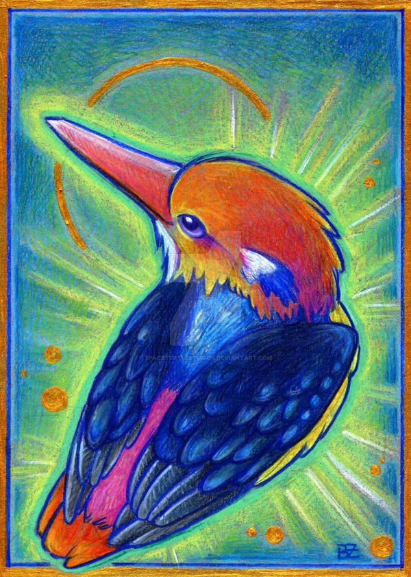 Birdazzling Kingfisher by SpaceTurtleStudios