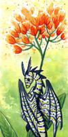 30 Days of Dragons - Day 21 - Milkweed Dragon