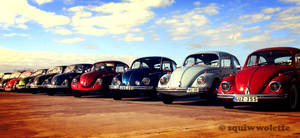 Aircooled by squiwwolette