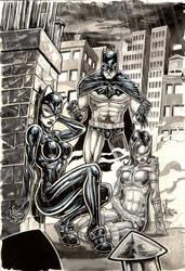 BATMAN FAMILY com