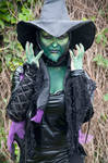 wicked witch of the west 5