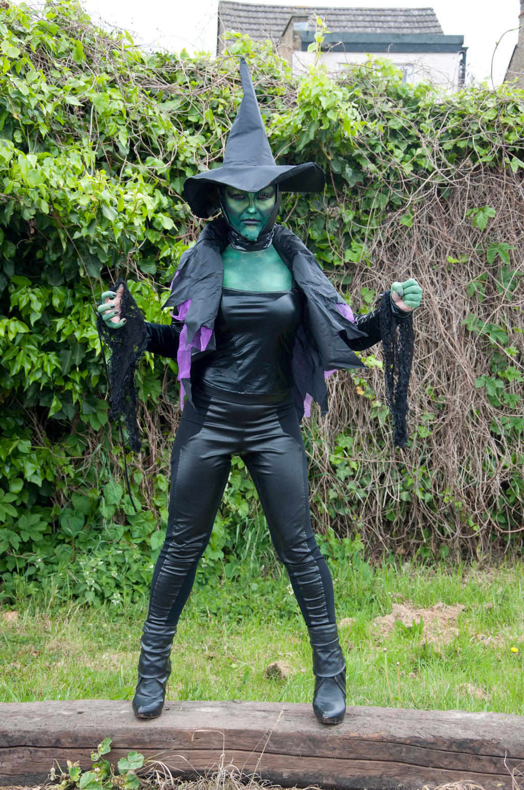 wicked witch of the west 7