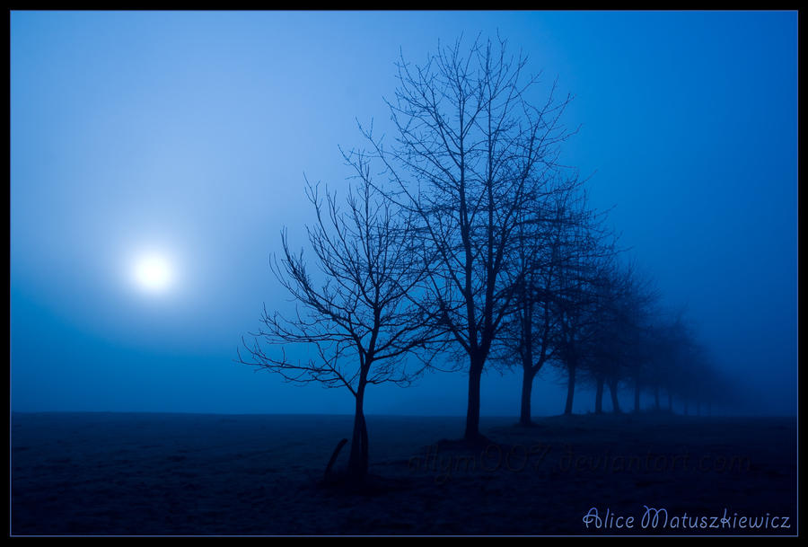 Blue Fog Sun by allym007