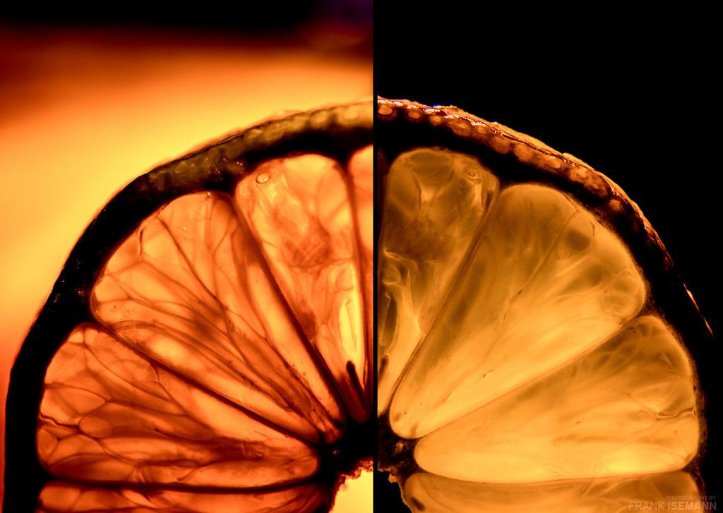 Orange Fusion by fti7