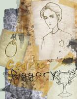Cedric Diggory by Ninidu