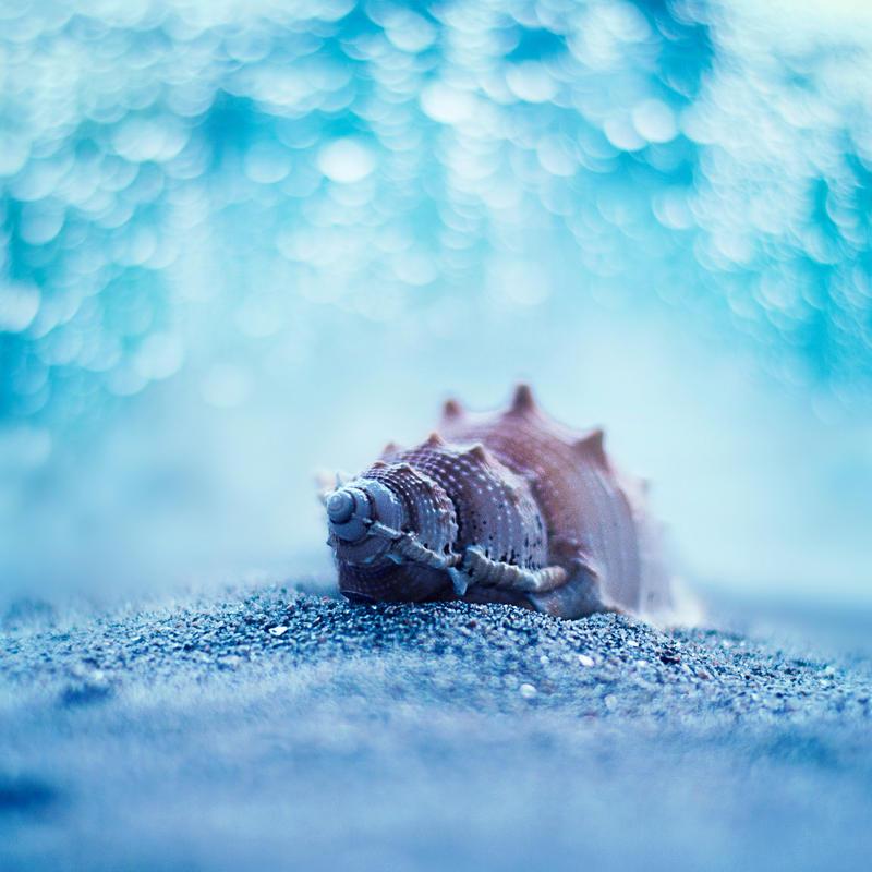 Ocean Memories by arefin03