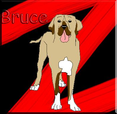 La Galeria De Brucecito Bruce_by_cande1514-d4qltty