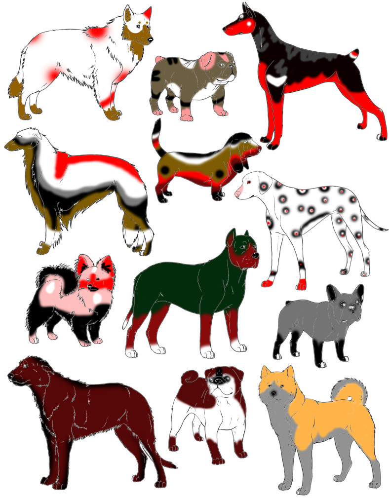 Centro De Adopcion ^^ De Brucecita! Point_dog_adoptables_by_cande1514-d4qtxj1