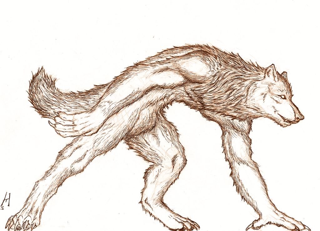 easy drawings of werewolves - photo #16