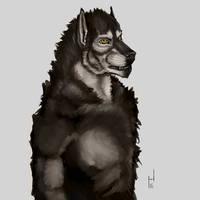 2016.17 Howlitzer Portrait by Howlitzer