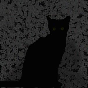 Cat Ego 20