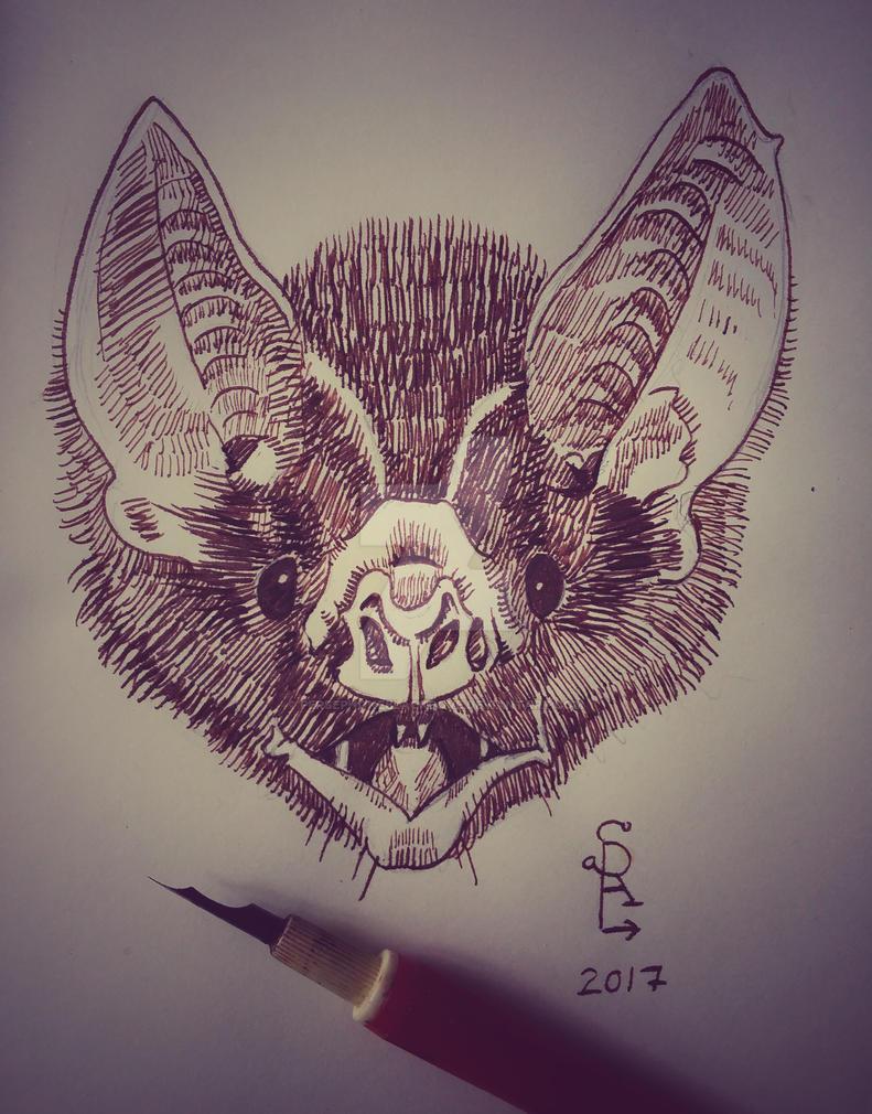 Bat sketch by Persephoneblackdove