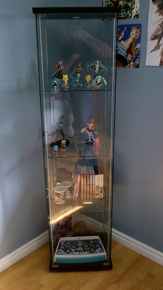 figure and anime display case by pyro1923 on deviantart. Black Bedroom Furniture Sets. Home Design Ideas