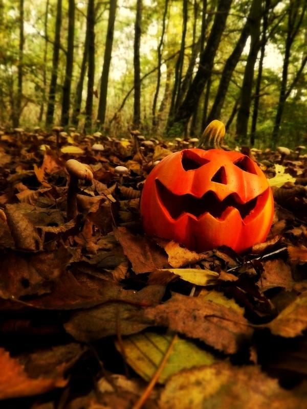 Samhain In The Forest 3 by Wilhelmine