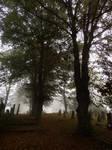 October Cemetery 5 by Wilhelmine