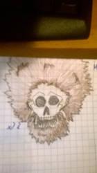 Hairy skull