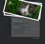 Point of You Studios - Website Design
