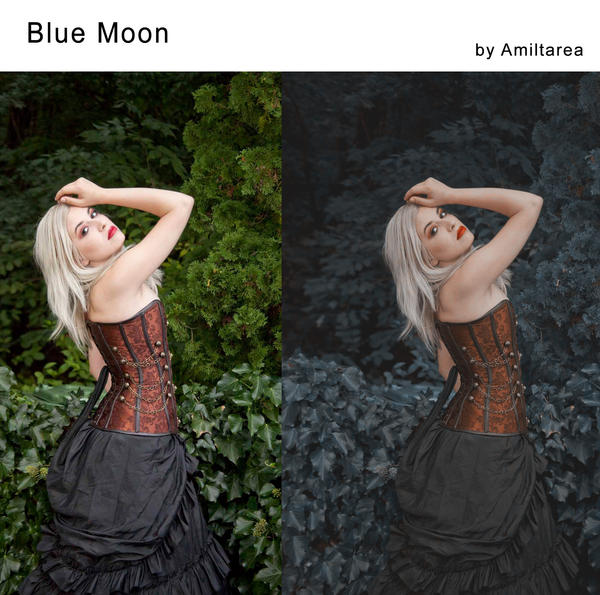 Blue Moon Action by Amiltarea