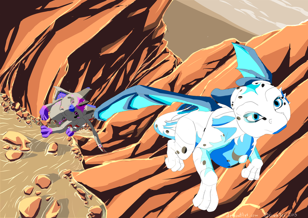 Canyon Race by KiwaTec