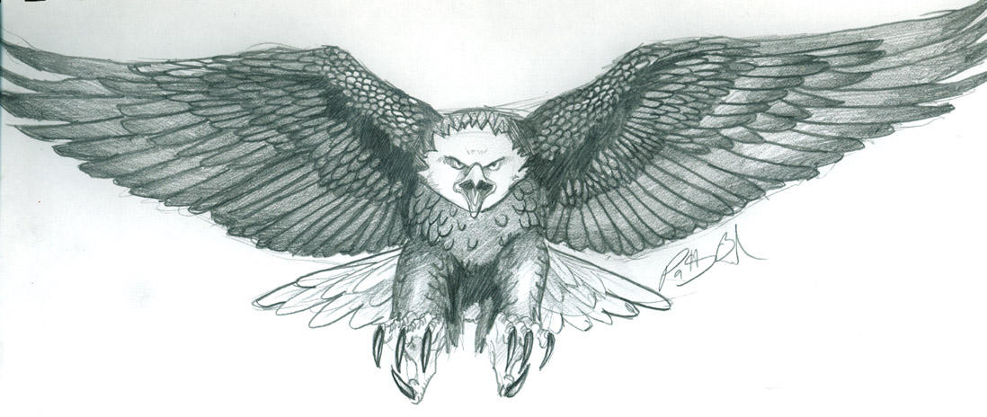 eagle tattoo by eilid on DeviantArt