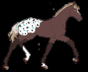 0258 Foal Design