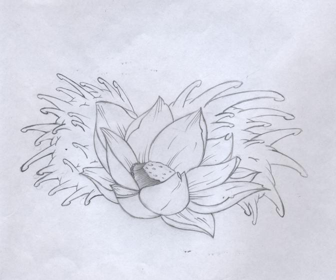 Lotus flower tattoo design by bunnysuit93 on deviantart lotus flower tattoo design by bunnysuit93 mightylinksfo