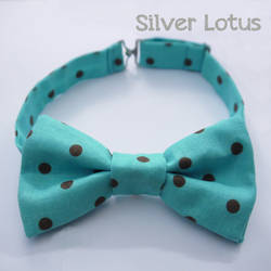 Aqua bow tie with brown polkadots