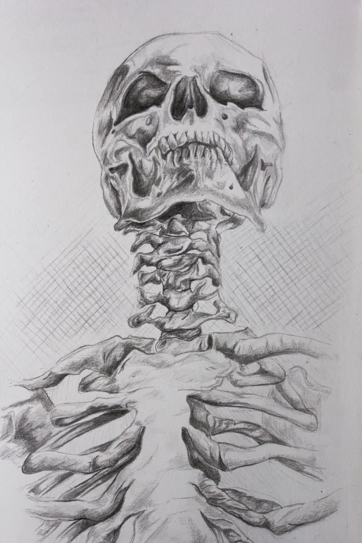 Observational Drawing Of Human Anatomy By Thelostartis On Deviantart