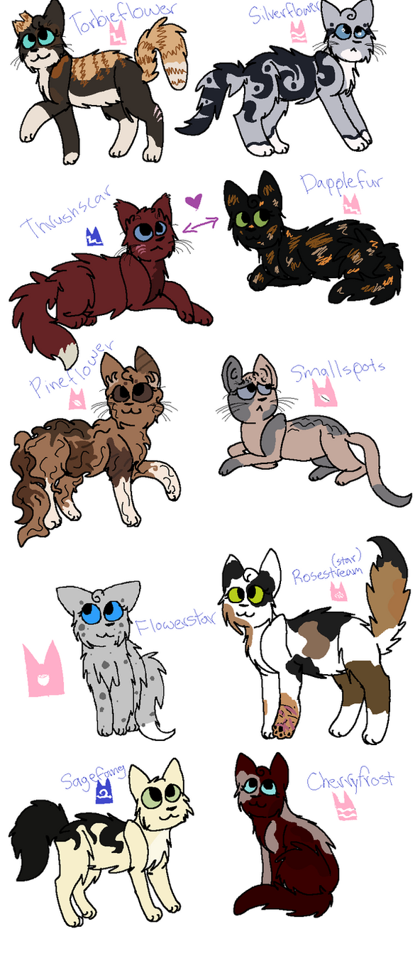 Names Of Stars For Cats