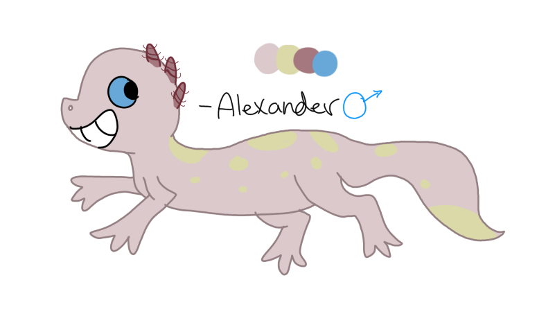 ALEXANDER THE SALAMANDER by Jclay251