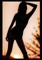 Sunset in her hair by Nukem1