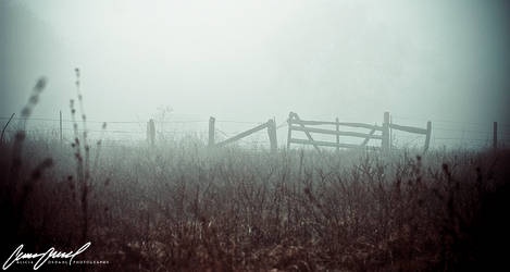 The Fence by nevermoregraphix