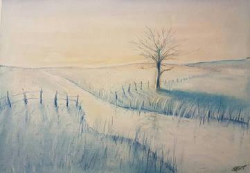 A Winter's Dawn by Plishman