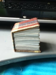 Mini Book!