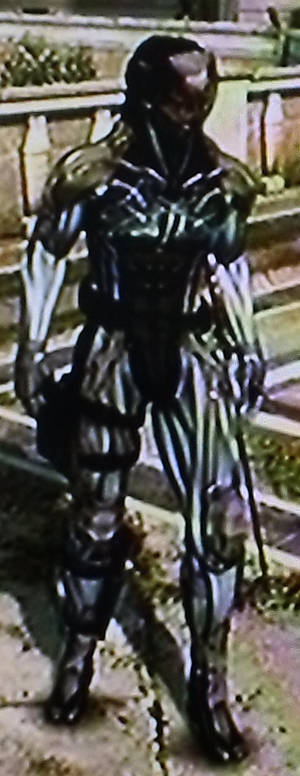 Raiden Armor
