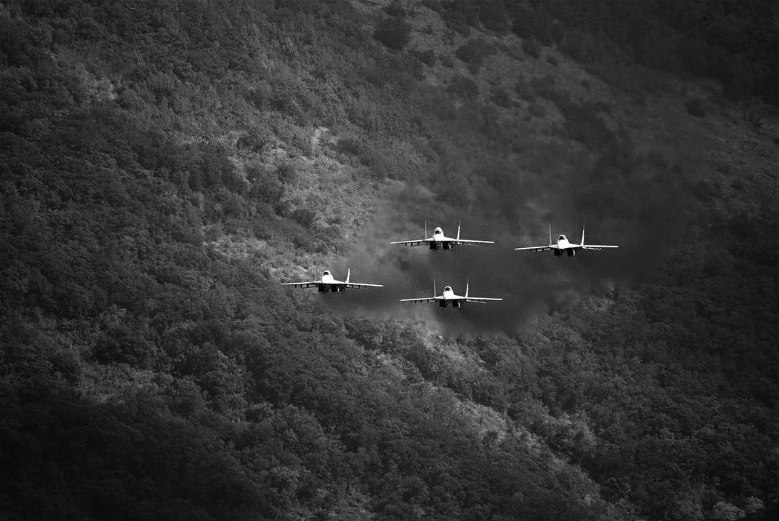 Swifts AT by Ergrassa
