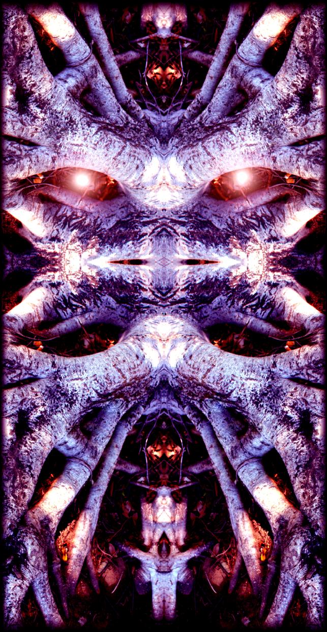 An elder by SIMONGILBERTHORPE