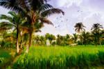 My Island_ NIAS