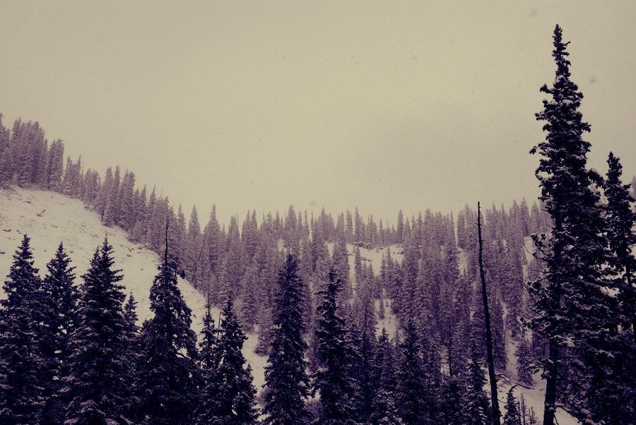 einsamkeit by InfiniteForests