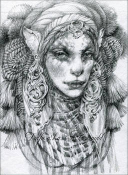 Cat nomad II