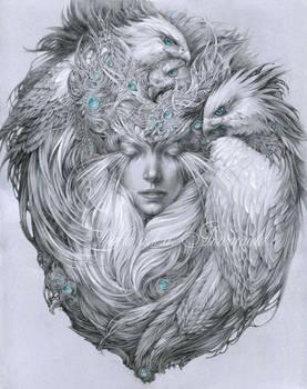 Snow hawks