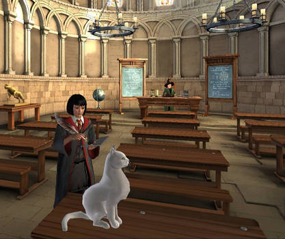 Me at Transfiguration Class by SmoothCriminalGirl16