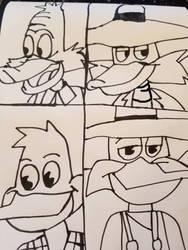 Drake Mallard/Darkwing Duck