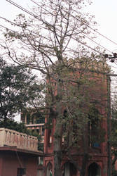 Lahore Old