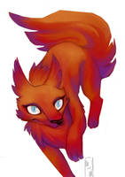 Red Foxy