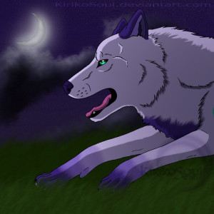 Glimmertheghostwolf's Profile Picture